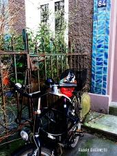 Vorgarten mit Fahrrad