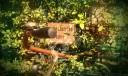 wpid-imag2458-1.jpg